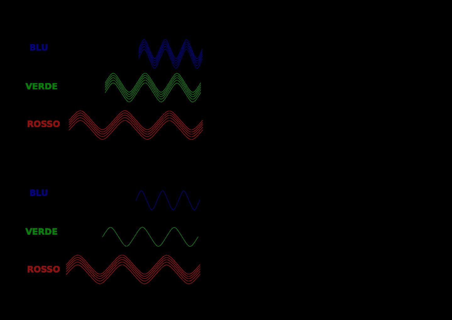 lunghezza d'onda e recettori